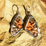 American Painted Lady Earrings