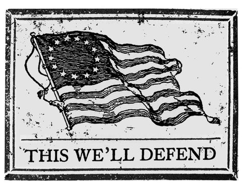 this_well_defend_flag_1778