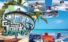 Sigatoka Fishing Charters - Performance