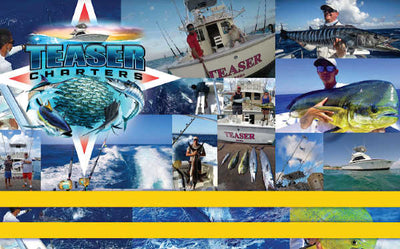 Teaser Charters