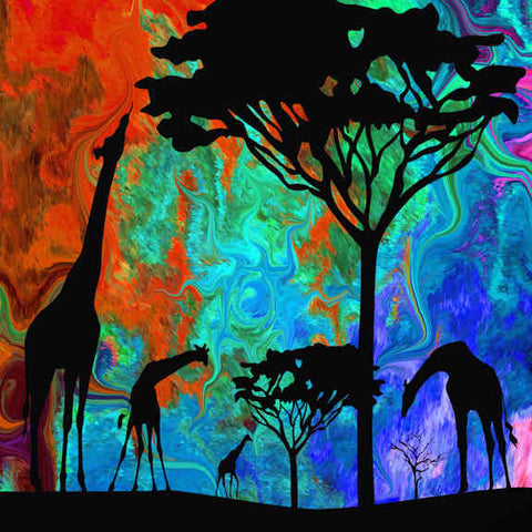 African Dawn no. 3 Canvas Wall Art - Quirky Happy