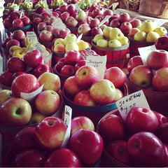 Apples at McGlasson Farm