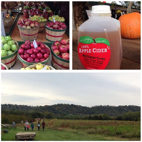 Apples and apple cider at McGlasson Farm