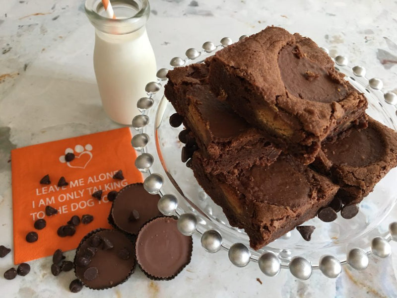 Double Fudge Peanut Butter Cup Brownies