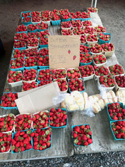 berries farm sale