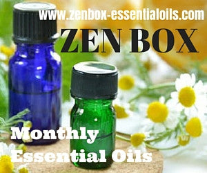 ZEN BOX ONE-TIME PURCHASE DECEMBER 2018