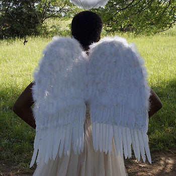 Medium Feather Angel Wings in White