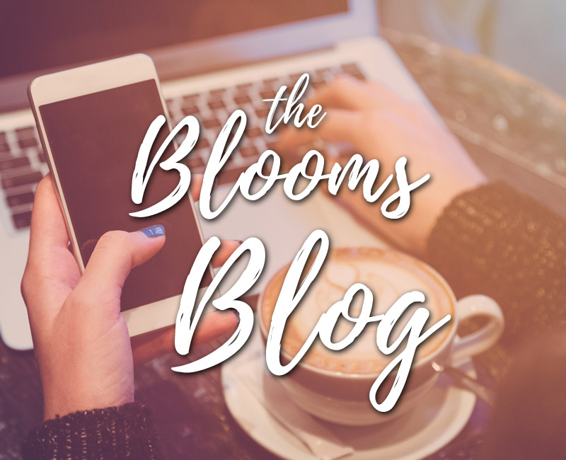 Click to read the Blooms Blog