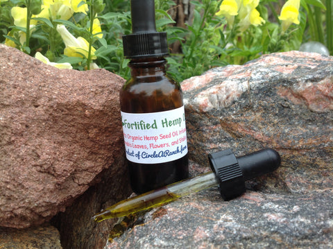 Fortified Hemp Moisturizing Oil - Circle A Ranch - 1
