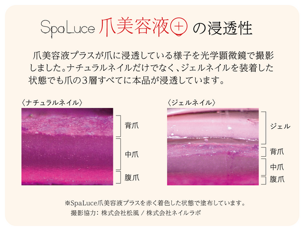 Spaluce Nail Serum Plus