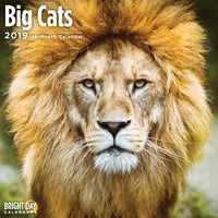 Big Cats 2019 Wall Calendar