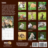Rabbits 2019 Wall Calendar