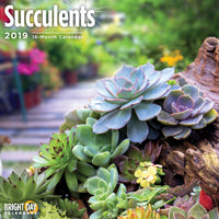 Succulents 2019 Wall Calendar