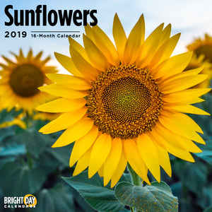 Sunflowers 2019 Wall Calendar