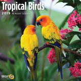 Tropical Birds 2019 Wall Calendar