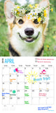 Corgi Puppies 2019 Wall Calendar