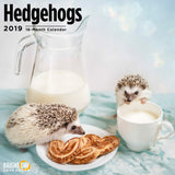 Hedgehogs 2019 Wall Calendar