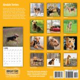 The selection of images in the 2019 Airedale Terriers 2019 Calender