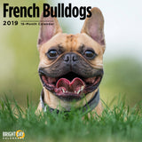 French Bulldogs 2019 Wall Calendar