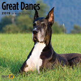 Great Danes 2019 Wall Calendar