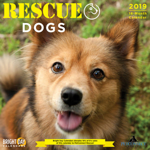 Rescue Dogs 2019 Wall Calendar