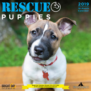 Rescue Puppies 2019 Wall Calendar