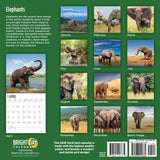Elephants 2019 Wall Calendar