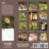 Foxes 2019 Wall Calendar