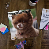 Pomeranian Puppies 2019 Wall Calendar