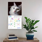 Rescue Cats 2019 Wall Calendar