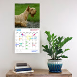 Scottish Terrier 2019 Wall Calendar