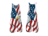 products/USA_Eagle_2019_white_set1.png