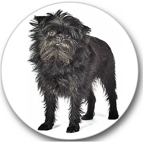 Affenpinscher Dog #1 Sticker Seals No.746