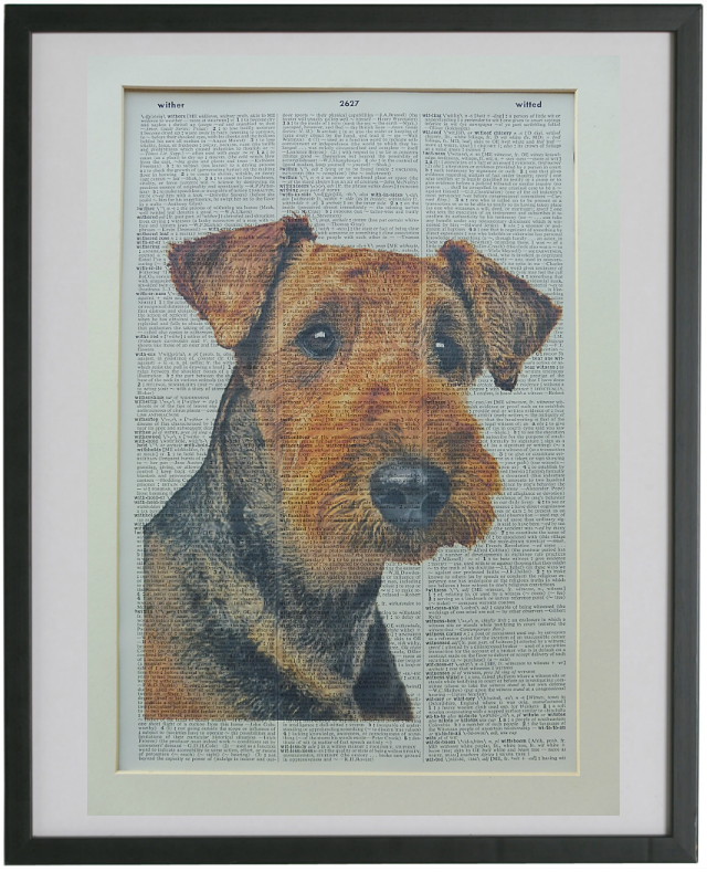 Airedale Terrier Dog Print No.773