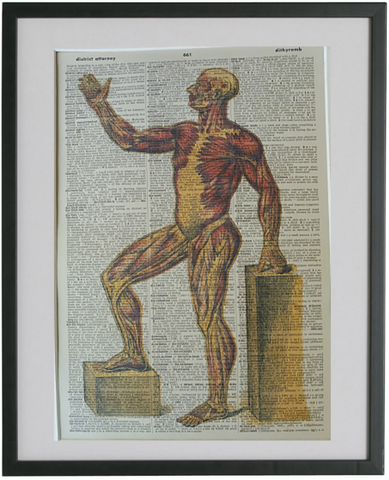 Anatomy Body Print No.100