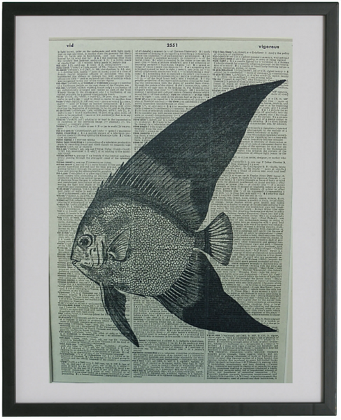 Angel Fish Print No.319