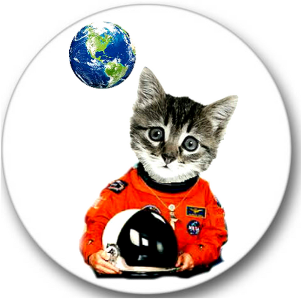 Space Cat Sticker Seals No.54