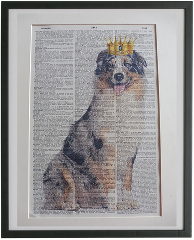 Australian Shepherd Dog #5 Wall Print No.954