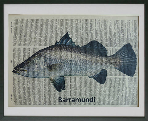 Barramundi Fish #1 Wall Art No.582