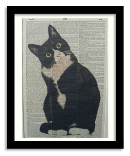 Black and White Cat Print No.354