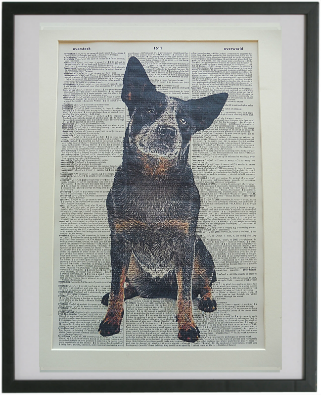Blue Heeler Dog #3 Print No.829