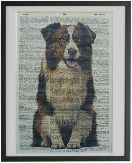 Border Collie Dog #3 Wall Art No.670