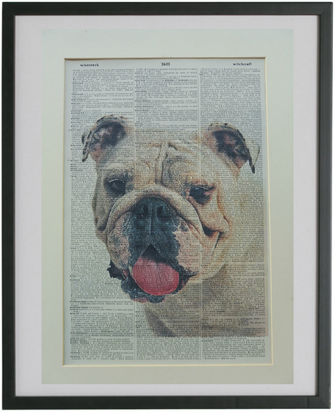 Bulldog #6 Wall Art No.771