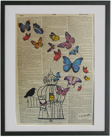 Butterflies Print No.378, botanical
