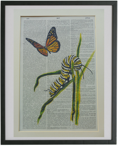 Butterfly Print No.769, botanical