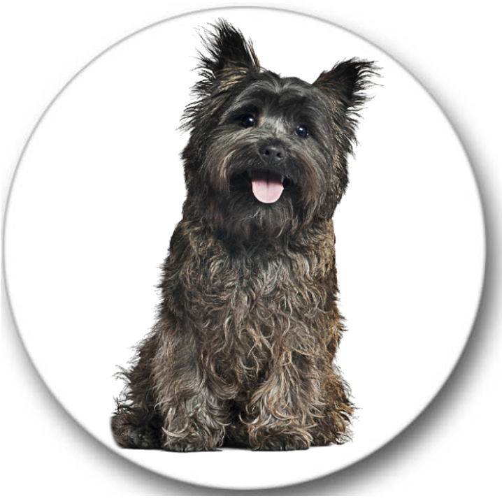 Cairn Terrier Dog #1 Sticker Seals No.110