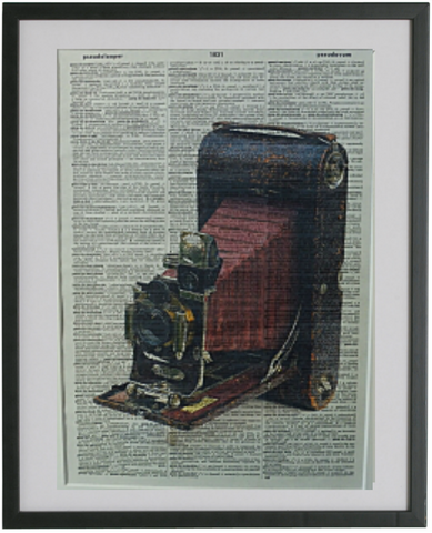 Folding Camera Wall Art No.81, vintage equipment