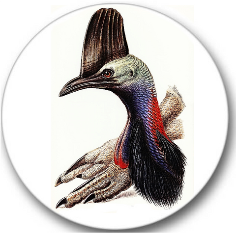 Cassowary Bird Sticker Seals No.815, bird prints
