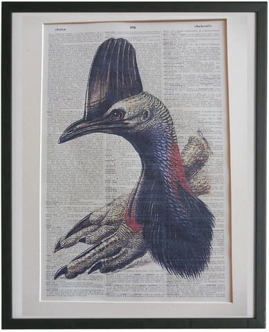 Cassowary Bird Wall Art No.815, bird print