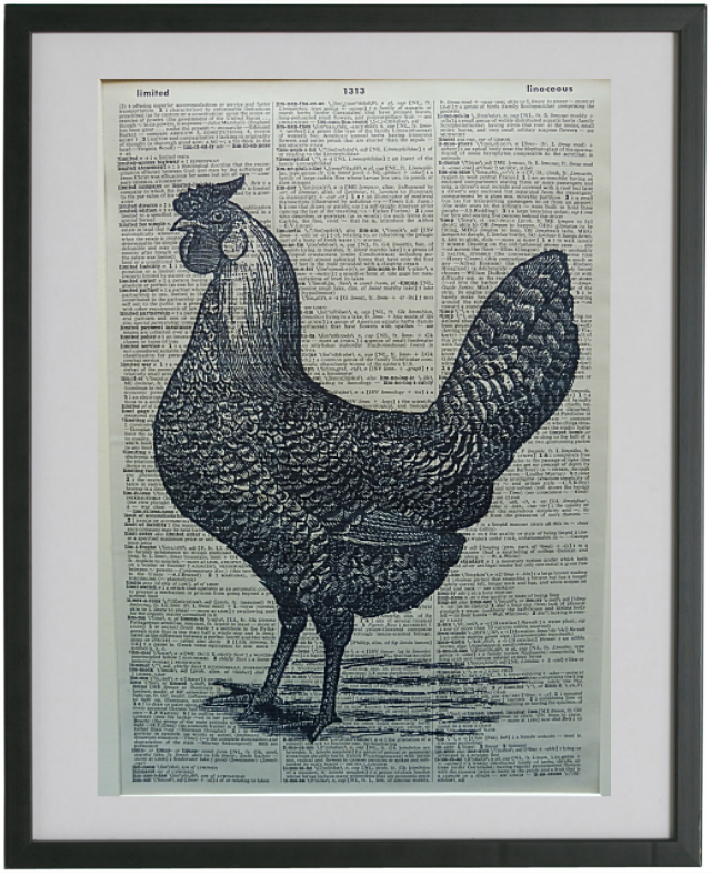 Chicken #6 Wall Art No.631, bird print